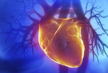 E' pronto il primo cuore bionico