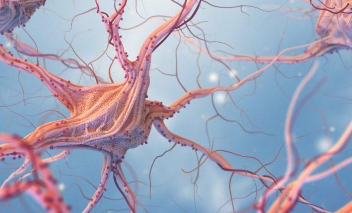 La Società Italiana di Neurologia fa chiarezza sul NeuroCovid: possibilità di conseguenze remote e non dimostrate