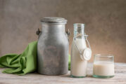 Latte asina, pediatra: no a bimbi sotto 2 anni, pochi grassi