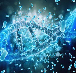 L'epigenetica e gli studi sul microbiotasupportano il concetto di mente quale unità integrata dell'olobionte umano-microbiota - img3