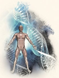 L'epigenetica e gli studi sul microbiotasupportano il concetto di mente quale unità integrata dell'olobionte umano-microbiota - img5
