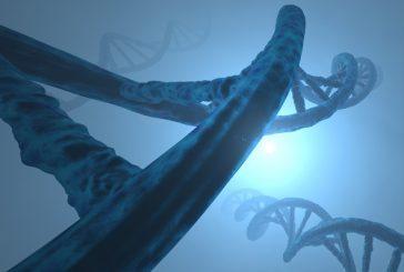 La stima della componente genetica alla luce dell'Epigenetica e della microbiota revolution